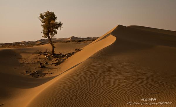 下的一個旗,面積為114606平方公里,人口約2萬,多為無人居住的沙漠區域圖片