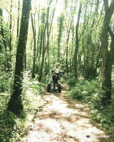 The Jungle-北爱尔兰