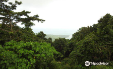 Mount Harriet National Park-南安达曼县