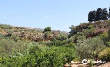 Il Giardino della Kolymbethra-阿格里真托