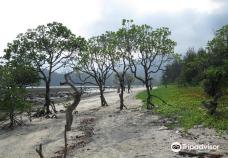 Diglipur Beach-安达曼-尼科巴群岛
