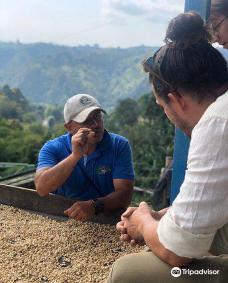 Las Acacias Coffee Farm-萨伦托
